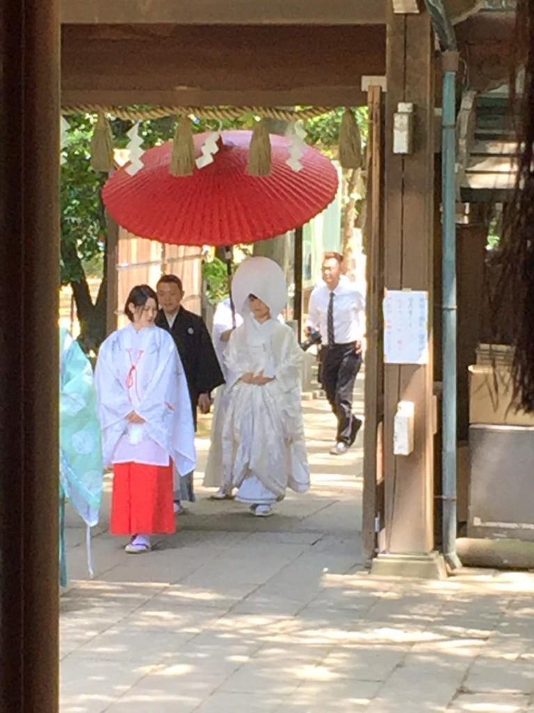 さすがテレ東、アド街赤坂〜一位は氷川神社でした!