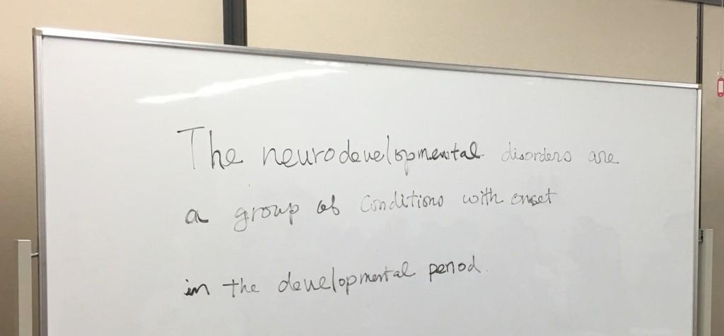 ひな祭りに行われた花風社講演会「神経発達障害という突破口」に参加しました!(其の一)