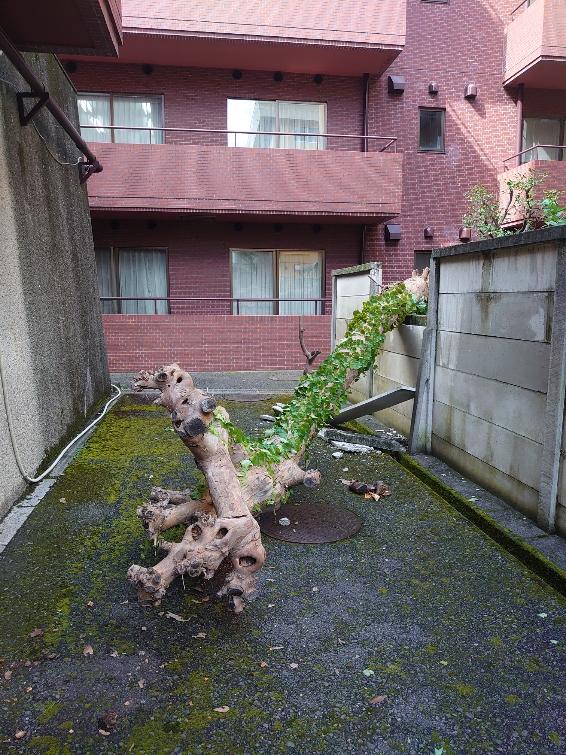 サラリーマンの皆さま、休むの仕事のうち。昨日のような台風の日は迷わず休まれては如何でしょう
